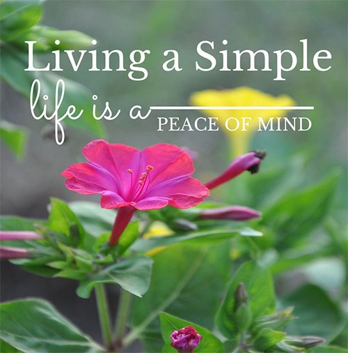 living-a-simple-life-peace-of-mind.jpg