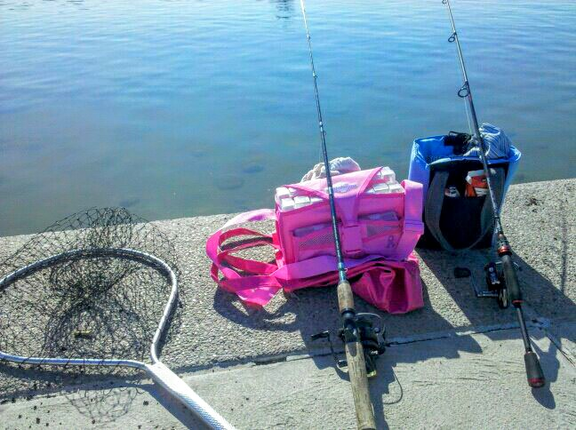 wpid-fishing_set_up_by_dawn_aka_spitfire-d5ni53p.jpeg