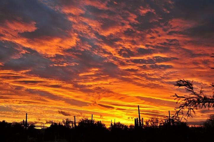20100108131218_sunset
