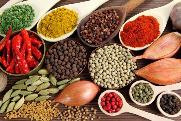 the_spices_of_india_1